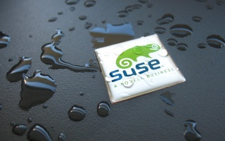 Random: Suse wet desktop