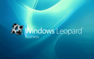 Leopard business wallpapers and stock photos