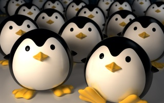 Penguin invasion wallpapers and stock photos