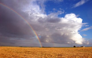 Rainbow over field wallpapers and stock photos
