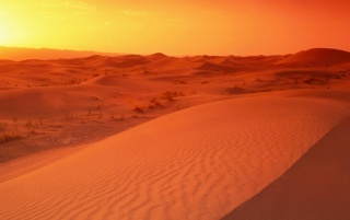 Desert sunrise wallpapers and stock photos
