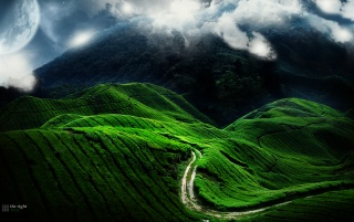 Green contrast hills wallpapers and stock photos