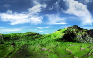 Vegetation hills wallpapers and stock photos