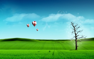 Balloons over field wallpapers and stock photos