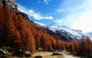 Gran Paradiso wallpapers and stock photos