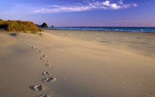 Footsteps on beach wallpapers and stock photos