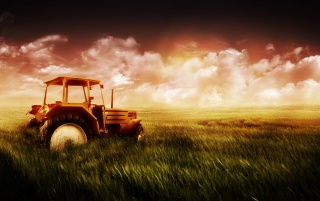 Tractor in the field wallpapers and stock photos