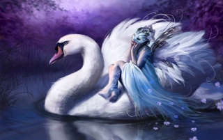 Woman riding swan wallpapers and stock photos