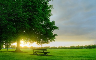 Bench in sunlight wallpapers and stock photos
