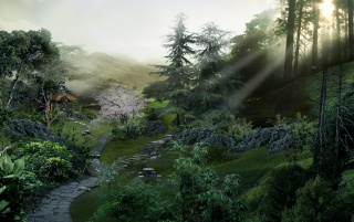 Chinese forest wallpapers and stock photos