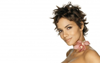 Halle with flower wallpapers and stock photos