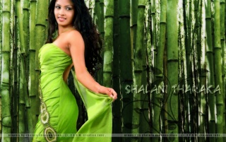 Shalani Tharaka ii wallpapers and stock photos