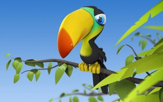 Colorful parrot wallpapers and stock photos