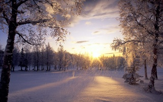 Fallender Schnee wallpapers and stock photos