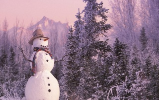 Frosty snowman wallpapers and stock photos