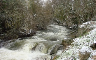 Cold in the river wallpapers and stock photos