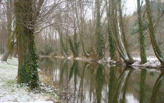 Tranquil cold river wallpapers and stock photos