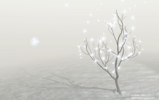 Christmas fairies wallpapers and stock photos
