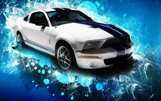 White Shelby GT wallpapers and stock photos