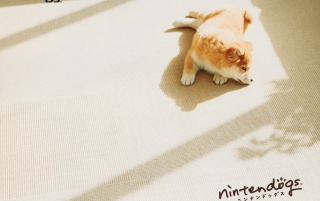 Nintendog on white wallpapers and stock photos