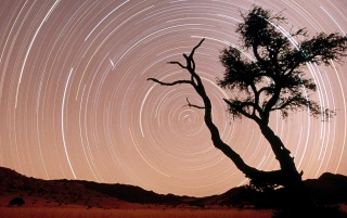 Star trails wallpapers and stock photos