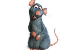 Random: Ratatouille the rat