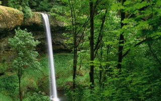Silver Falls State Park wallpapers and stock photos