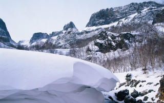 Heavy snow wallpapers and stock photos