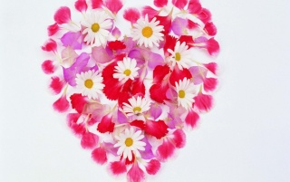 Heart of flowers wallpapers and stock photos