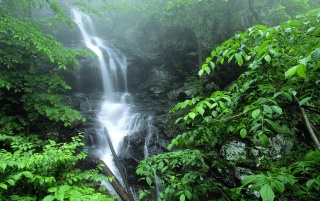 Lower Doyles Falls wallpapers and stock photos