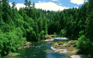 Umpqua River wallpapers and stock photos