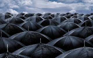 Random: Black umbrellas