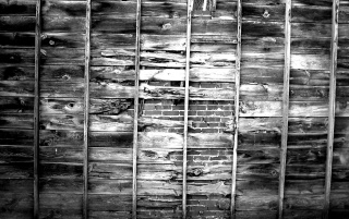 Greyscale wall wallpapers and stock photos