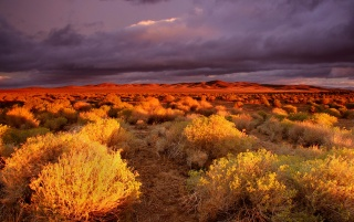 Antelope Valley wallpapers and stock photos