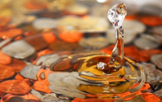 Orange water drop wallpapers and stock photos