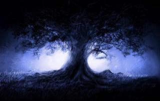 Blue tree wallpapers and stock photos