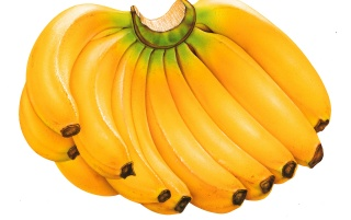 Random: Yellow bananas