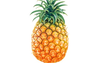 Tasty pineapple wallpapers and stock photos