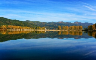 Tree line reflection wallpapers and stock photos
