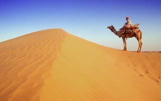 Desert traveller wallpapers and stock photos