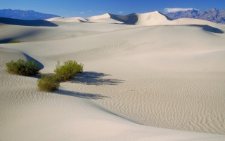Random: Death Valley