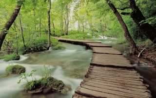 Plitvice Park wallpapers and stock photos