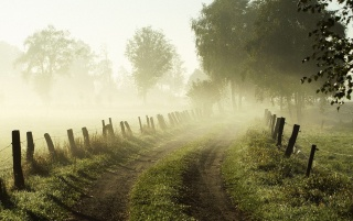 Misty Morning wallpapers and stock photos