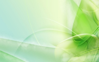 Green leaves vector wallpapers and stock photos
