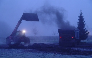 Diggers In The Mist wallpapers and stock photos