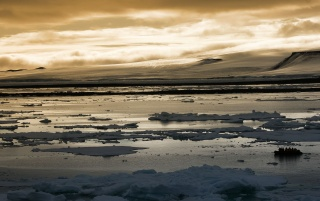 Previous: Arctic sunset