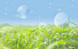 Transparent bubbles wallpapers and stock photos
