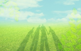 Shadows on grass wallpapers and stock photos