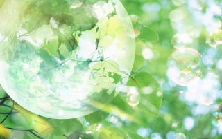 Random: Bubble and leaves