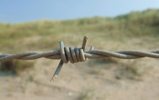 Barbed wire wallpapers and stock photos